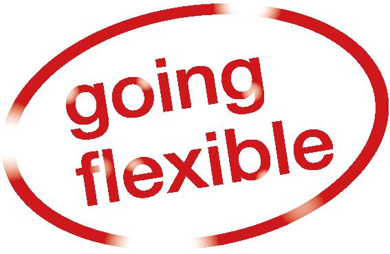 HEITZ-going-flexible